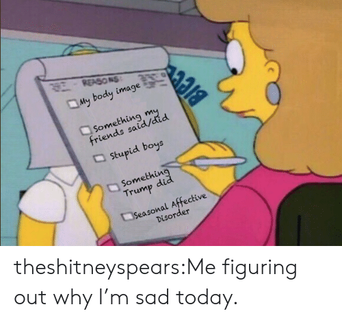 Friends, Target, and Tumblr: REASONS  My body image  Something  friends said/did  stupid boys  Somethin  Trump did  Seasonal Affective  Disorder theshitneyspears:Me figuring out why I'm sad today.