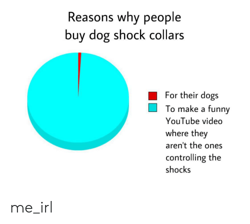 Dogs, Funny, and youtube.com: Reasons why people  buy dog shock collars  For their dogs  To make a funny  YouTube video  where they  aren't the ones  controlling the  shocks me_irl