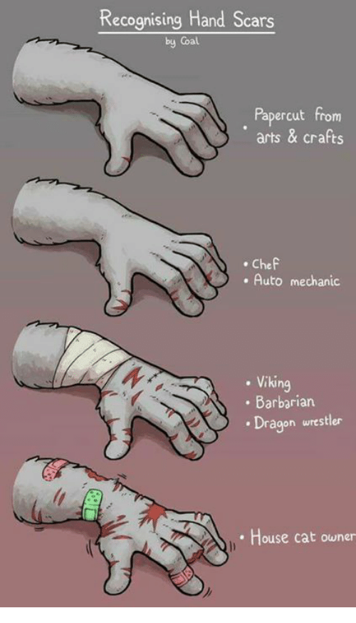 Memes, Chef, and House: Recognising Hand Scars  by Coal  Papercut from  arts & crafts  . Chef  . Auto mechanic  . Viking  . Barbariar  . Dragon wrestler  House cat owner