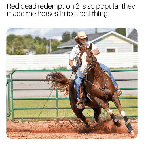 red dead redemption 2: Red dead redemption 2 is so popular they  made the horses in to a real thing