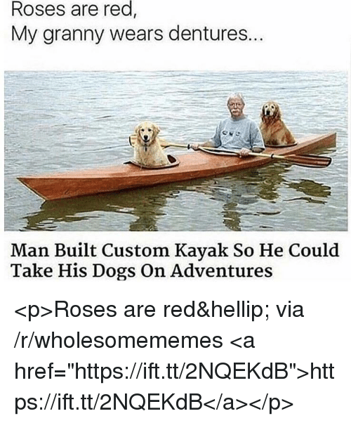 """Dogs, Kayak, and Red: red,  Roses are  My granny wears dentures..  Man Built Custom Kayak So He Could  Take His Dogs On Adventures <p>Roses are red… via /r/wholesomememes <a href=""""https://ift.tt/2NQEKdB"""">https://ift.tt/2NQEKdB</a></p>"""