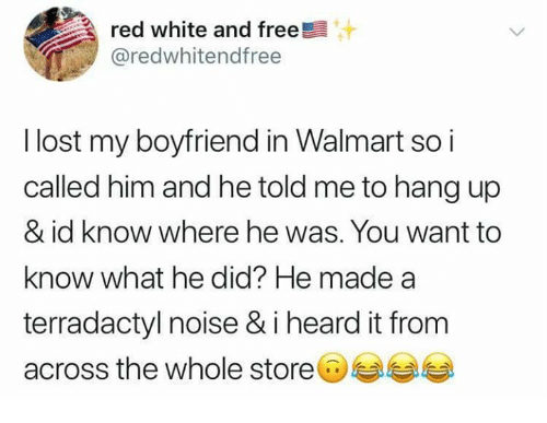 Memes, Walmart, and Lost: red white and free  @redwhitendfree  l lost my boyfriend in Walmart so i  called him and he told me to hang up  & id know where he was. You want to  know what he did? He made a  terradactyl noise & i heard it from  across the whole store@부부부