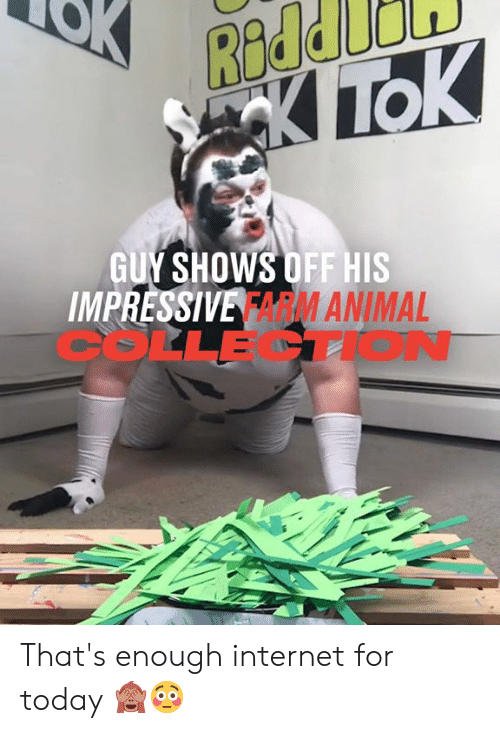 Dank, Internet, and Today: Redd  KTC  TOK  GUY SHOWS OFF HIS  IMPRESSIVE FARMANIMAL  COLLECTION That's enough internet for today 🙈😳