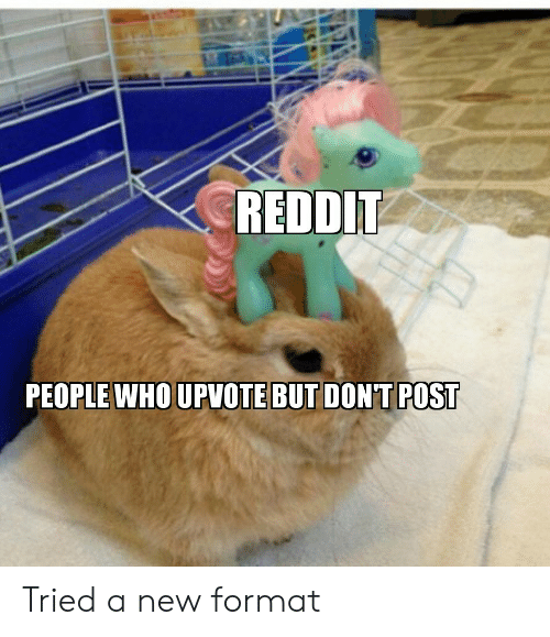 Reddit, Who, and Format: REDDIT  PEOPLE WHO UPVOTE BUT DONT POST Tried a new format