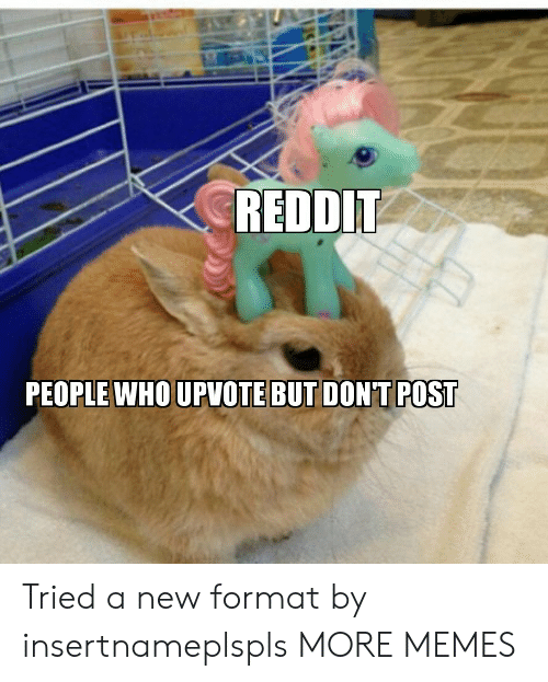 Dank, Memes, and Reddit: REDDIT  PEOPLE WHO UPVOTE BUT DONT POST Tried a new format by insertnameplspls MORE MEMES