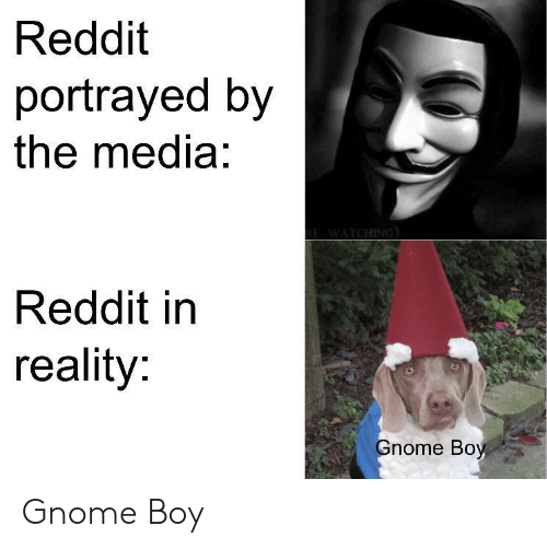 Reddit, Portrayed, and Reality: Reddit  portrayed by  the media:  Reddit in  reality:  nome Boy Gnome Boy