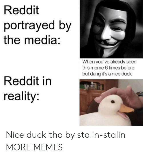 Portrayed: Reddit  portrayed by  the media:  When you've already seen  this meme 6 times before  but dang it's a nice duck  Reddit in  reality: Nice duck tho by stalin-stalin MORE MEMES