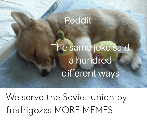 Hundred: Reddit  The same joke said  a hundred  different ways We serve the Soviet union by fredrigozxs MORE MEMES