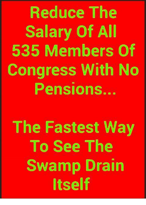 Memes, 🤖, and Congress: Reduce The  Salary Of All  535 Members Of  Congress With No  Pensions...  The Fastest Way  To See The  Swamp Drain  tself