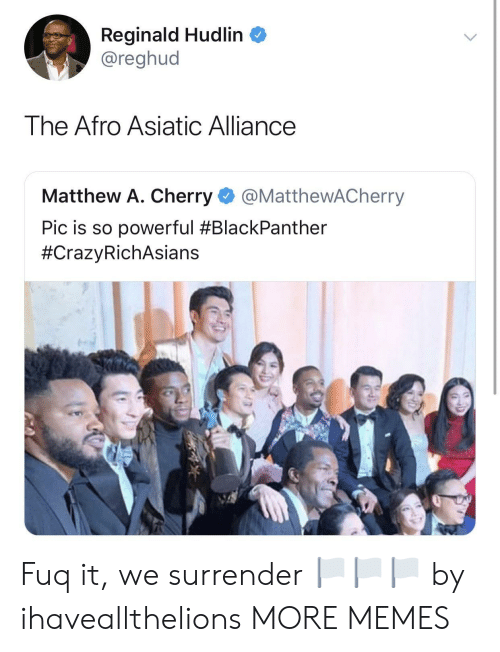 Matthew A: Reginald Hudlin  @reghud  The Afro Asiatic Alliance  Matthew A. Cherry @MatthewACherry  Pic is so powerful Fuq it, we surrender 🏳️🏳️🏳️ by ihaveallthelions MORE MEMES