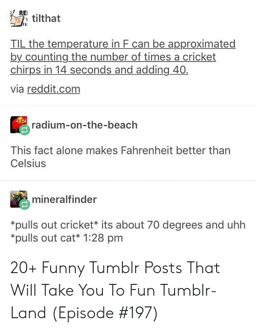Being Alone, Funny, and Reddit: REI  Ttilthat  IL  TIL the temperature in F can be approximated  by counting the number of times a cricket  chirps in 14 seconds and adding 40  via reddit.com  radium-on-the-beach  This fact alone makes Fahrenheit better than  Celsius  mineralfinder  *pulls out cricket* its about 70 degrees and uhh  *pulls out cat* 1:28 pm 20+ Funny Tumblr Posts That Will Take You To Fun Tumblr-Land (Episode #197)