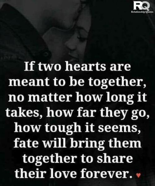 Love, Memes, and Forever: Relationship Quotes  If two hearts are  meant to be together,  no matter how long it  takes, how far they go,  how tough it seems,  fate will bring them  together to share  their love forever. »