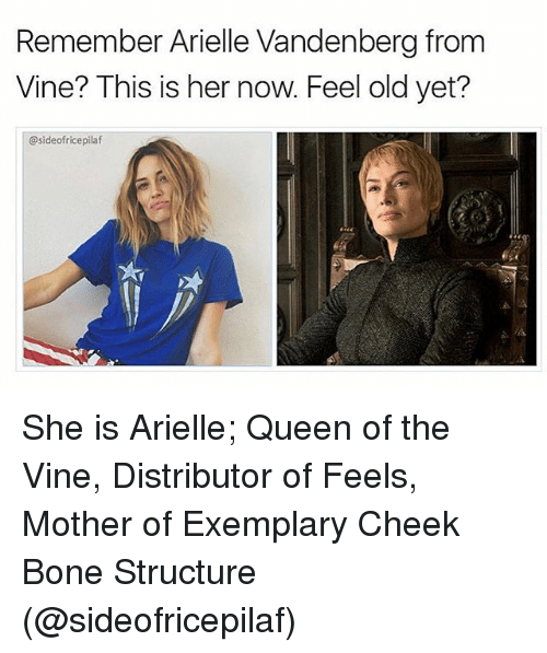 Memes, Vine, and Queen: Remember Arielle Vandenberg from  Vine? This is her now. Feel old yet?  @sideofricepilaf She is Arielle; Queen of the Vine, Distributor of Feels, Mother of Exemplary Cheek Bone Structure (@sideofricepilaf)