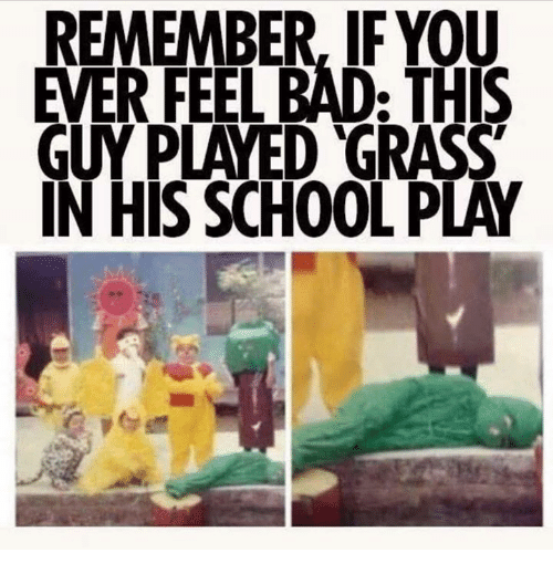 Bad, Dank, and School: REMEMBER, IF YOU  EVER FEEL BAD: THIS  GUY PLAYED GRASS  IN HIS SCHOOL PLAY