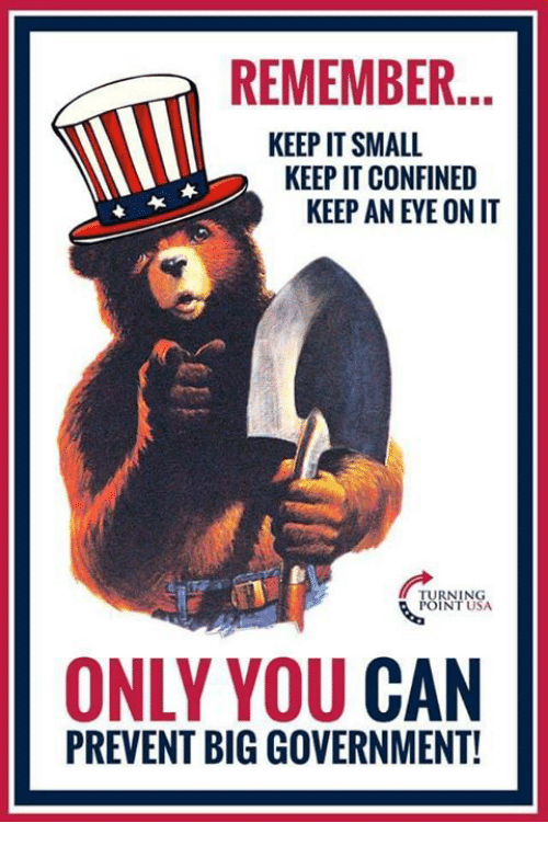 Big Government: REMEMBER.  KEEP IT SMALL  KEEP IT CONFINED  KEEP AN EYE ON IT  UININSA  INT USA  ONLY YOU CAN  PREVENT BIG GOVERNMENT!
