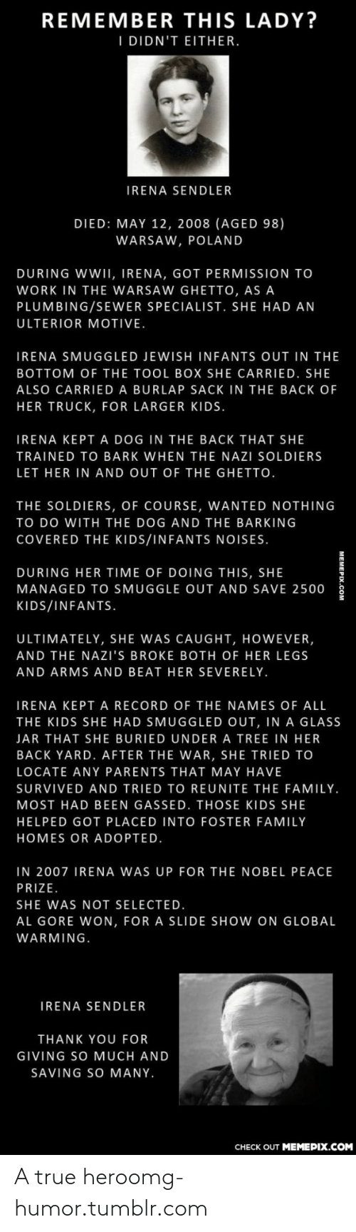 Irena: REMEMBER THIS LADY?  I DIDN'T EITHER.  IRENA SENDLER  DIED: MAY 12, 2008 (AGED 98)  WARSAW, POLAND  DURING WWII, IRENA, GOT PERMISSION TO  WORK IN THE WARSAW GHETTO, AS A  PLUMBING/SEWER SPECIALIST. SHE HAD AN  ULTERIOR MOTIVE.  IRENA SMUGGLED JEWISH INFANTS OUT IN THE  BOTTOM OF THE TOOL BOX SHE CARRIED. SHE  ALSO CARRIED A BURLAP SACK IN THE BACK OF  HER TRUCK, FOR LARGER KIDS.  IRENA KEPT A DOG IN THE BACK THAT SHE  TRAINED TO BARK WHEN THE NAZI SOLDIERS  LET HER IN AND OUT OF THE GHETTO.  THE SOLDIERS, OF COURSE, WANTED NOTHING  TO DO WITH THE DOG AND THE BARKING  COVERED THE KIDS/INFANTS NOISES.  DURING HER TIME OF DOING THIS, SHE  MANAGED TO SMUGGLE OUT AND SAVE 2500  KIDS/INFANTS.  ULTIMATELY, SHE WAS CAUGHT, HOWEVER,  AND THE NAZI'S BROKE BOTH OF HER LEGS  AND ARMS AND BEAT HER SEVERELY.  IRENA KEPT A RECORD OF THE NAMES OF ALL  THE KIDS SHE HAD SMUGGLED OUT, IN A GLASS  JAR THAT SHE BURIED UNDER A TREE IN HER  BACK YARD. AFTER THE WAR, SHE TRIED TO  LOCATE ANY PARENTS THAT MAY HAVE  SURVIVED AND TRIED TO REUNITE THE FAMILY.  MOST HAD BEEN GASSED. THOSE KIDS SHE  HELPED GOT PLACED INTO FOSTER FAMILY  HOMES OR ADOPTED.  IN 2007 IRENA WAS UP FOR THE NOBEL PEACE  PRIZE.  SHE WAS NOT SELECTED.  AL GORE WON, FOR A SLIDE SHOW ON GLOBAL  WARMING.  IRENA SENDLER  THANK YOU FOR  GIVING SO MUCH AND  SAVING SO MANY.  CНЕCK OUT MEМЕРIХ.COM A true heroomg-humor.tumblr.com