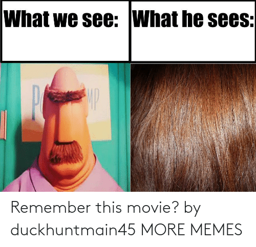 remember: Remember this movie? by duckhuntmain45 MORE MEMES
