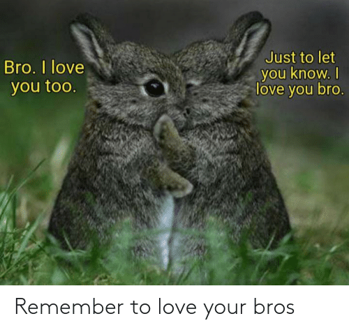remember: Remember to love your bros