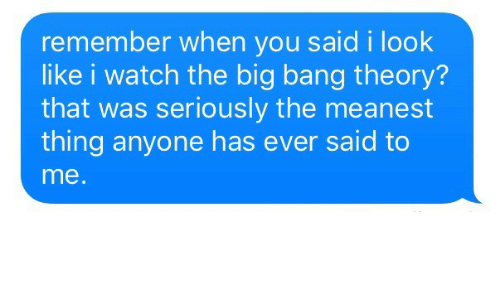 Watch, The Big Bang Theory, and Big Bang Theory: remember when you said i look  like i watch the big bang theory?  that was seriously the meanest  thing anyone has ever said to  me