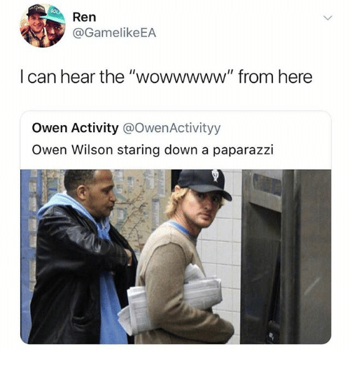 "Memes, Owen Wilson, and 🤖: Ren  @GamelikeEA  l can hear the ""wowwwww"" from here  Owen Activity @OwenActivityy  Owen Wilson staring down a paparazzi"