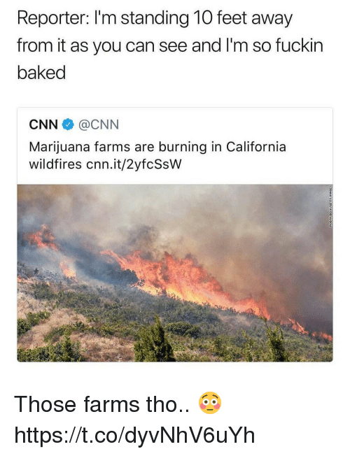Baked, cnn.com, and Memes: Reporter: I'm standing 10 feet away  from it as you can see and I'm so fuckir  baked  CNN@CNN  Marijuana farms are burning in California  wildfires cnn.it/2yfcSsW Those farms tho.. 😳 https://t.co/dyvNhV6uYh