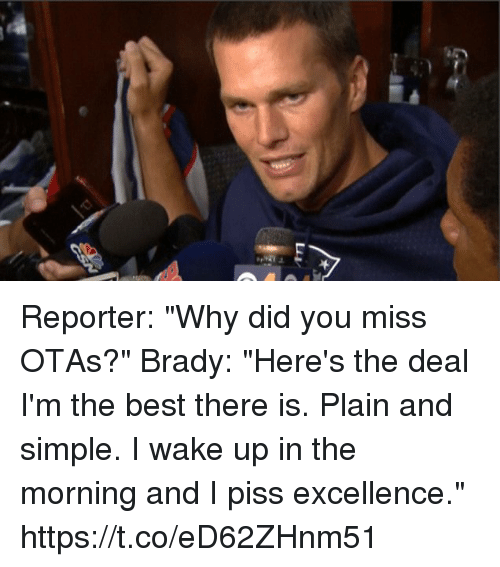 """Memes, Best, and Brady: Reporter: """"Why did you miss OTAs?""""  Brady: """"Here's the deal I'm the best there is. Plain and simple. I wake up in the morning and I piss excellence."""" https://t.co/eD62ZHnm51"""