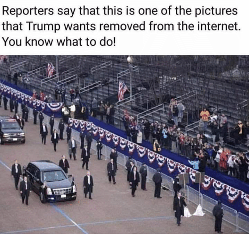 Internet, Pictures, and Trump: Reporters say that this is one of the pictures  that Trump wants removed from the internet.  You know what to do!