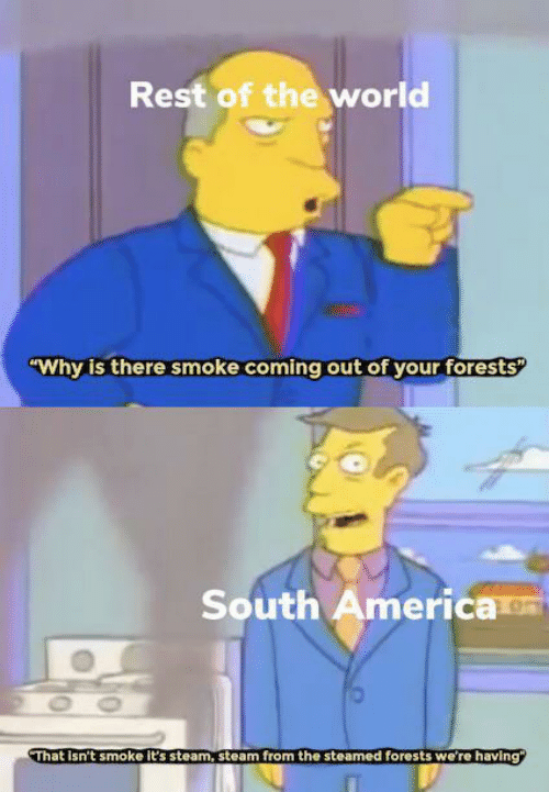 """smoke: Rest of the world  """"Why is there smoke coming out of your forests  South America  OO  That Isn't smoke it's steam, steam from the steamed forests we're having"""