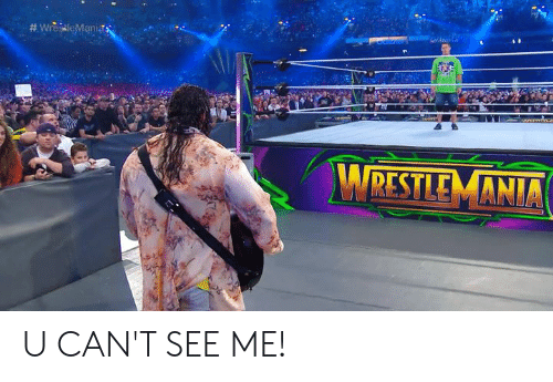 See,  Can't See, and Cant: RESTLE MANIA U CAN'T SEE ME!