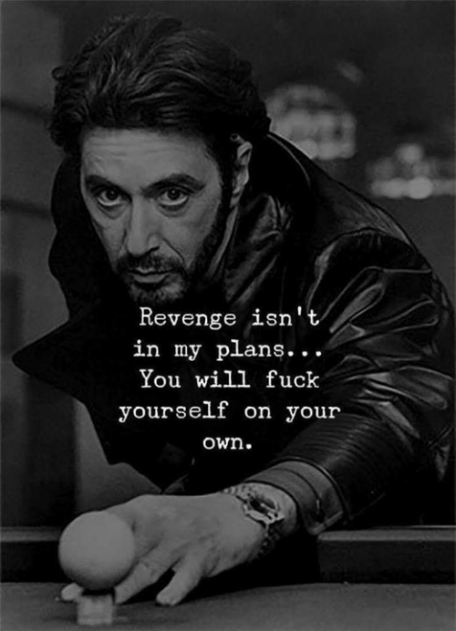 Revenge, Fuck, and Will: Revenge isn't  in my plans...  You will fuck  yourself on your  own