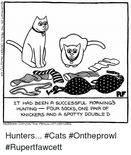 double d: RF  IT HAD BEEN A SUCCESSFUL MORNINGS  HUNTING  FOUR SOCKS, ONE PAIR OF  KNICKERS AND A SPOTTY DOUBLE D  FACEBOOK .COM/ON THE PROVUL CAT CARTOONS Hunters... #Cats #Ontheprowl #Rupertfawcett