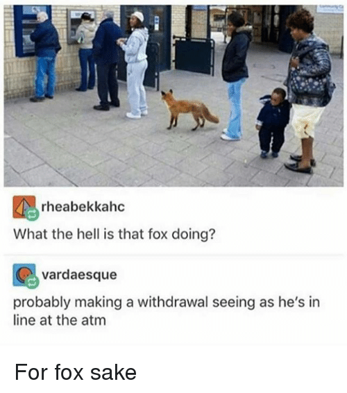 Memes, Hell, and 🤖: rheabekkahc  What the hell is that fox doing?  vardaesque  probably making a withdrawal seeing as he's in  line at the atm For fox sake