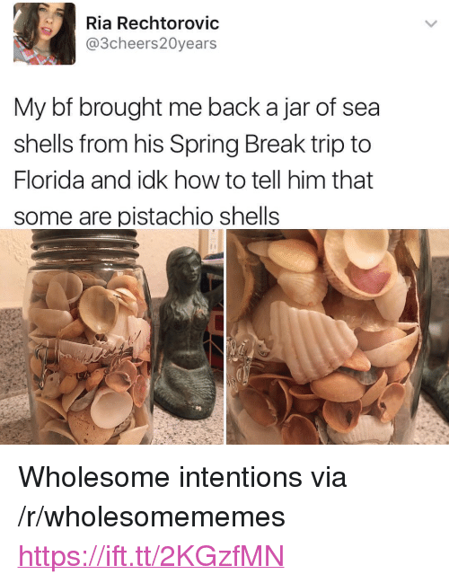"Sea Shells: Ria Rechtorovic  @3cheers20years  My bf brought me back a jar of sea  shells from his Spring Break trip to  Florida and idk how to tell him that  some are pistachio shells <p>Wholesome intentions via /r/wholesomememes <a href=""https://ift.tt/2KGzfMN"">https://ift.tt/2KGzfMN</a></p>"