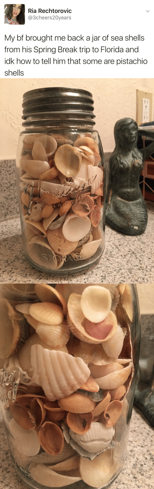 Sea Shells: Ria Rechtorovic  @3cheers20years  My bf brought me back a jar of sea shells  from his Spring Break trip to Florida and  idk how to tell him that some are pistachio  Shells
