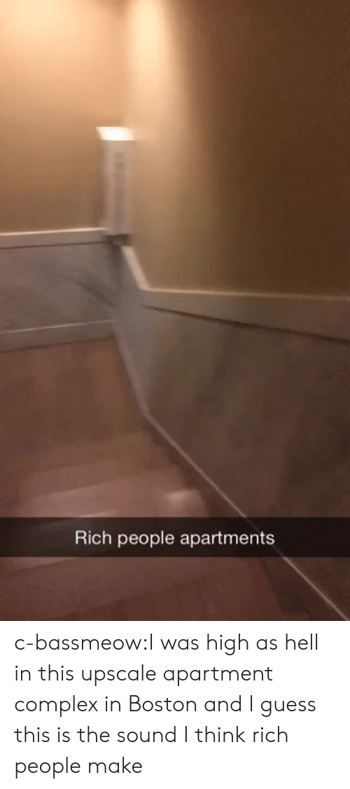 Complex, Tumblr, and Blog: Rich people apartments c-bassmeow:I was high as hell in this upscale apartment  complex in Boston and I guess this is the sound I think rich people make