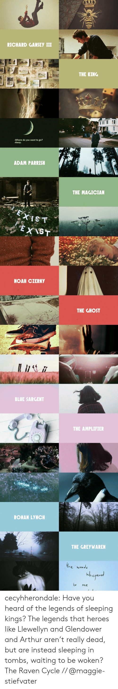 Arthur, Target, and Tumblr: RICHARD GANSEY iI  THE KING   -Where do you want to go?  -Away.  ADAM PARRISH  THE MAGICIAN   NOAH CZERNY  THE GHOST   BLUE SARGENT  THE AMPLIFIER   DREAM  OF  RONAN LYNCH  THE GREYWAREN  e wood  s pere  to me cecyhherondale:  Have you heard of the legends of sleeping kings? The legends that heroes like Llewellyn and Glendower and Arthur aren't really dead, but are instead sleeping in tombs, waiting to be woken?  The Raven Cycle // @maggie-stiefvater