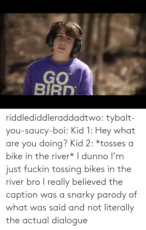 hey: riddlediddleraddadtwo:  tybalt-you-saucy-boi:  Kid 1: Hey what are you doing? Kid 2: *tosses a bike in the river* I dunno I'm just fuckin tossing bikes in the river bro    I really believed the caption was a snarky parody of what was said and not literally the actual dialogue