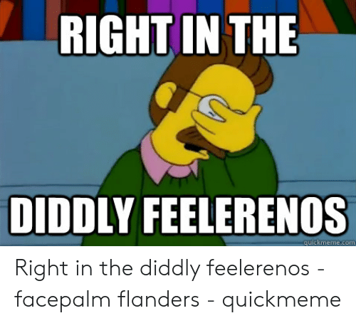 Ned Flanders Meme: RIGHT IN THE  DIDDLY FEELERENOS  quickmeme.com Right in the diddly feelerenos - facepalm flanders - quickmeme