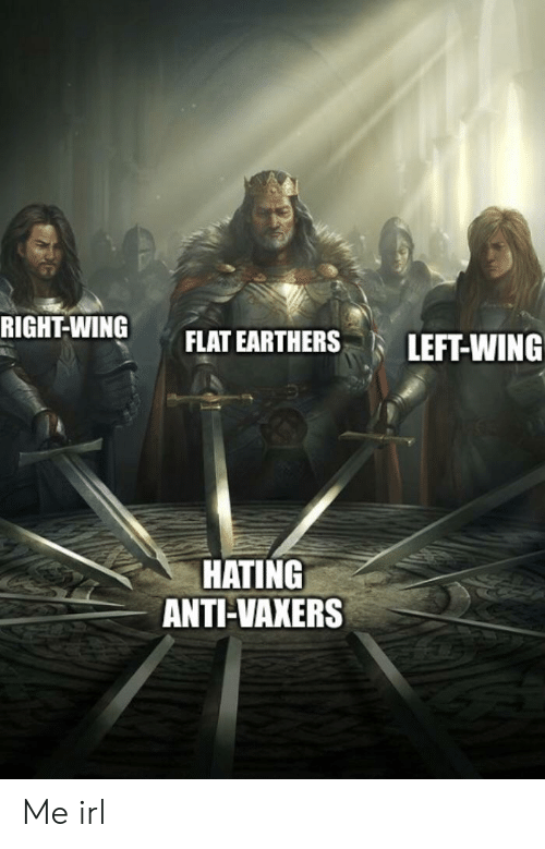 Irl, Me IRL, and Anti: RIGHT-WING FLAT EARTHERS LEFT-WING  HATING  ANTI-VAXERS Me irl