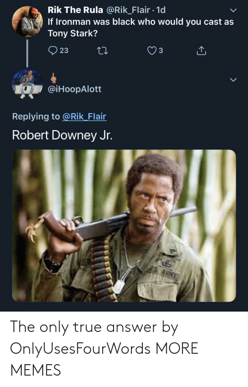 Dank, Memes, and Robert Downey Jr.: Rik The Rula @Rik_Flair 1d  If Ironman was black who would you cast as  Tony Stark?  23  @iHoopAlott  Replying to @Rik Flair  Robert Downey Jr. The only true answer by OnlyUsesFourWords MORE MEMES
