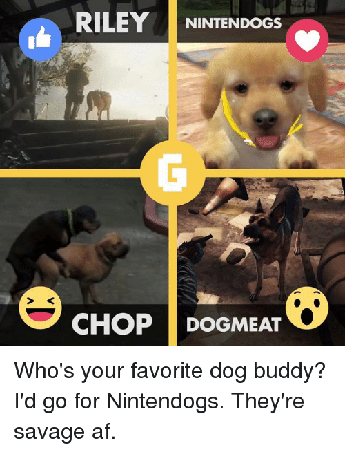 nintendogs: RILEY  NINTENDOGS  CHOP DOGMEAT Who's your favorite dog buddy? I'd go for Nintendogs. They're savage af.