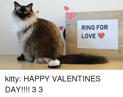 Love, Tumblr, and Valentine's Day: RING FOR  LOVE kitty:  HAPPY VALENTINES DAY!!!! 3 3