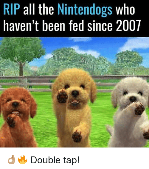 nintendogs: RIP all the  Nintendogs  who  haven't been fed since 2007 👌🏽🔥 Double tap!