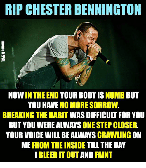 Habitate: RIP CHESTER BENNINGTON  NOW IN THE END YOUR BODY IS NUMB BUT  YOU HAVE NO MORE SORROW.  BREAKING THE HABIT WAS DIFFICULT FOR YOU  BUT YOU WERE ALWAYS ONE STEP CLOSER.  YOUR VOICE WILL BE ALWAYS CRAWLING ON  ME FROM THE INSIDE TILL THE DAY  I BLEED IT OUT AND FAINT