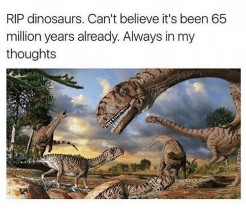 Dank, Dinosaurs, and Been: RIP dinosaurs. Can't believe it's been 65  million years already. Always in my  thoughts