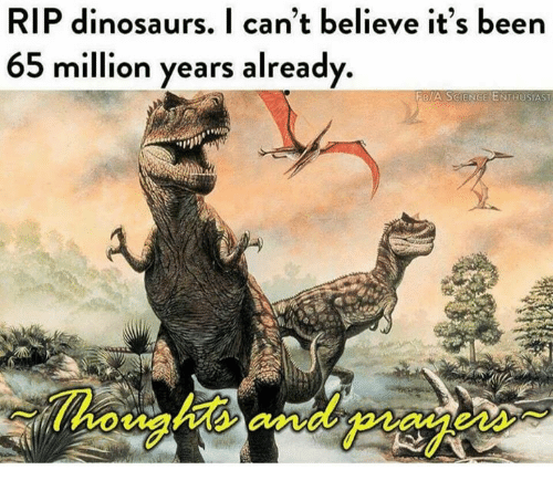 Dinosaurs, Been, and Believe: RIP dinosaurs. I can't believe it's been  65 million years already  FRIA SGIENGE ENTHUSIAST