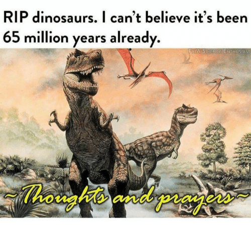 Dinosaurs, Dank Memes, and Been: RIP dinosaurs. I can't believe it's been  65 million years already.