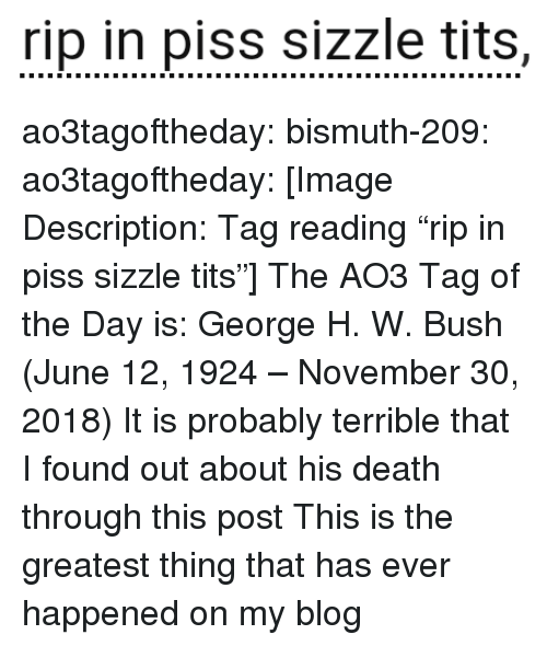 "Target, Tits, and Tumblr: rip in piss sizzle tits, ao3tagoftheday:  bismuth-209:  ao3tagoftheday:  [Image Description: Tag reading ""rip in piss sizzle tits""]  The AO3 Tag of the Day is: George H. W. Bush (June 12, 1924 – November 30, 2018)   It is probably terrible that I found out about his death through this post  This is the greatest thing that has ever happened on my blog"