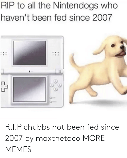 nintendogs: RIP to all the Nintendogs who  haven't been fed since 2007 R.I.P chubbs not been fed since 2007 by maxthetoco MORE MEMES