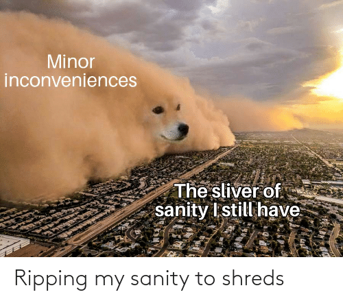 ripping: Ripping my sanity to shreds